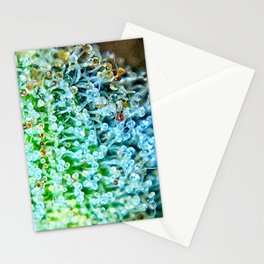 Key Lime Pie Blue Dream Strain Stationery Cards