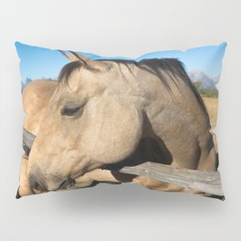 Shy - Horse Plays Coy in Western Wyoming Pillow Sham