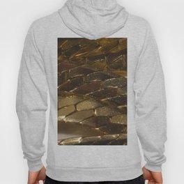 gold? chain Hoody