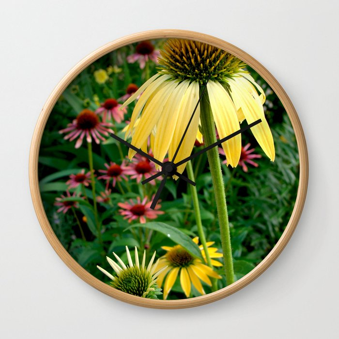 Coneflower Garden Wall Clock