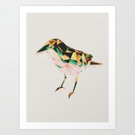 Bird #06 Art Print