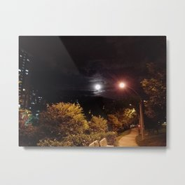 Landscape Dark Metal Print