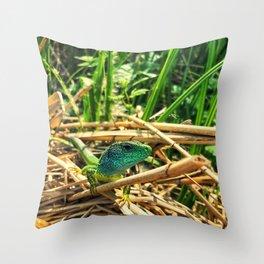 curious lizard Throw Pillow
