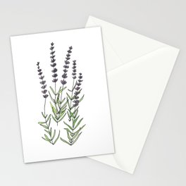 Lavender art print, ink and watercolor Stationery Cards
