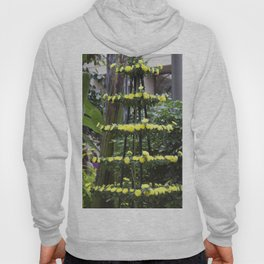 Longwood Gardens Autumn Series 207 Hoody