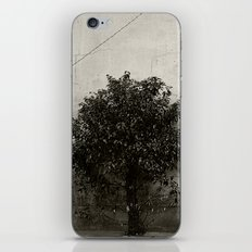 Your world, My world iPhone & iPod Skin