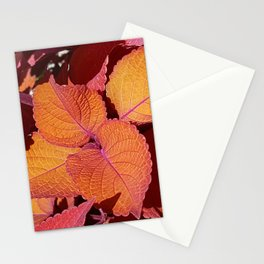 Red Sunset Leaves Stationery Cards