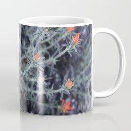 Desert Brushes (Woolly Indian Paintbrush) Coffee Mug