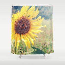 Sunflower Meadow Shower Curtain