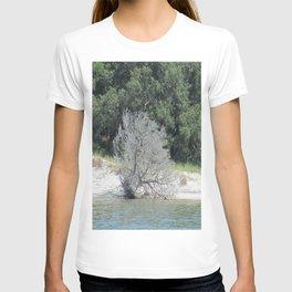 The Skeleton Tree on the Beach T-shirt