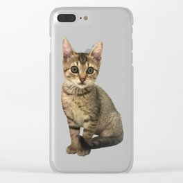 Brown Kitten Clear iPhone Case