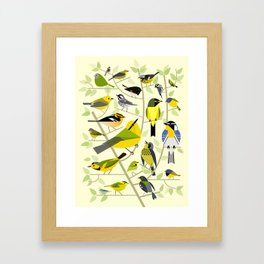 New World Warblers 1 Framed Art Print