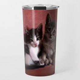 Brother kittens Travel Mug