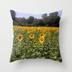Field of Sunflowers Color Photography Throw Pillow