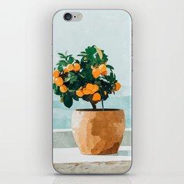 Orange Tree iPhone Skin