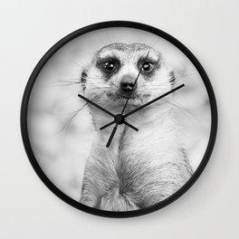 Meerkat portrait Wall Clock