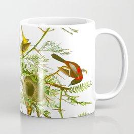Orchard Oriole Bird Coffee Mug