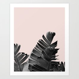 Palm leaves modern art Art Print