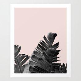 Palm leaves modern art Art Print