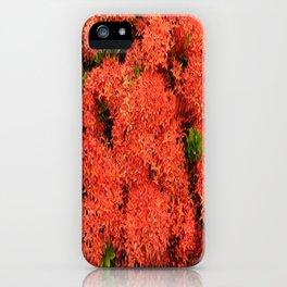 Tropical Orange Flowers iPhone Case