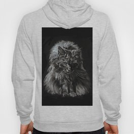 Who's for Dinner? Big Black & White Main Coon Cat Hoody