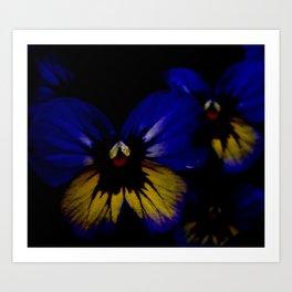 Dark Midsummer Pansies, Love Potion Art Print