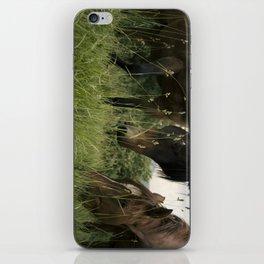 horses iPhone Skin