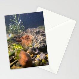 Bottom of Casco Bay (1) Stationery Cards