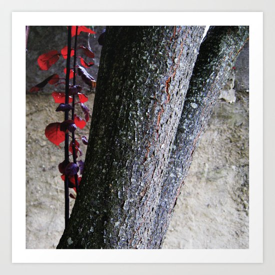 Urban tree with red leaves Art Print