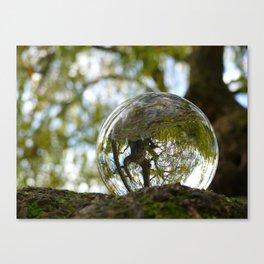 A tree seen through the glass ball Canvas Print