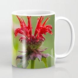 Hummingbird XVII Coffee Mug