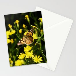 Beautiful Butterfly lowers field. Crimea, in May 2019 Stationery Cards