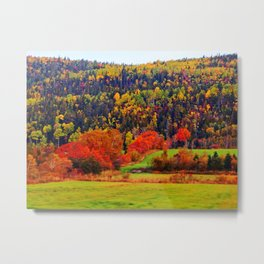 Explosion of Autumn Colors Metal Print