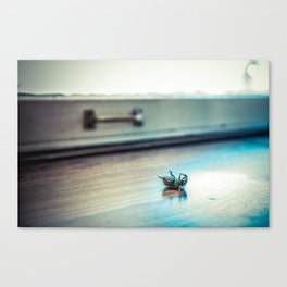 A Bugs Life... Canvas Print