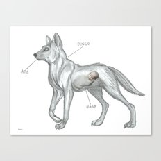 MAYBE THE DINGO ATE YOUR BABY Canvas Print