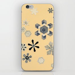 Snowflakes iPhone Skin