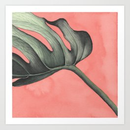 Monstera on Pink Art Print