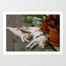 Sleepy mom and kitty Art Print