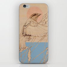 Myshkin Sparrow iPhone & iPod Skin