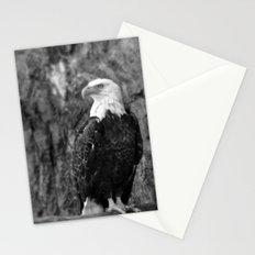 Haliaeetus leucocephalus Stationery Cards