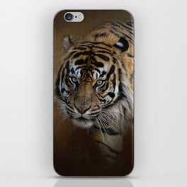 Bengal Stare iPhone Skin