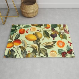 Vintage Fruit Pattern XIII Rug