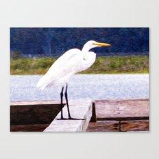 Egret Regret Canvas Print