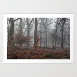Misty Winter Woodland Art Print