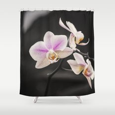 Orchid Dance Shower Curtain