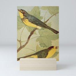 Vintage Print - Canadian Warbler & Wilson's Warbler Mini Art Print