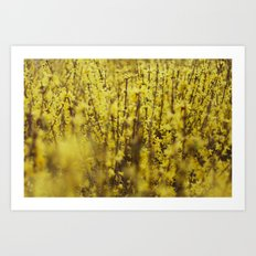 yellow flowers Art Print