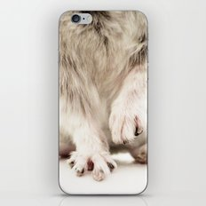 Chinchilla Hands = The Cutest Hands iPhone & iPod Skin