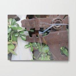 Window Display Metal Print