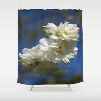 philippines Shower Curtains featuring Deutzia Cream Petals Against Blue Sky by taiche